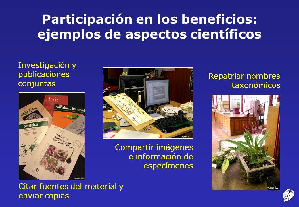 Participación en los beneficios: ejemplos de aspectos científicos