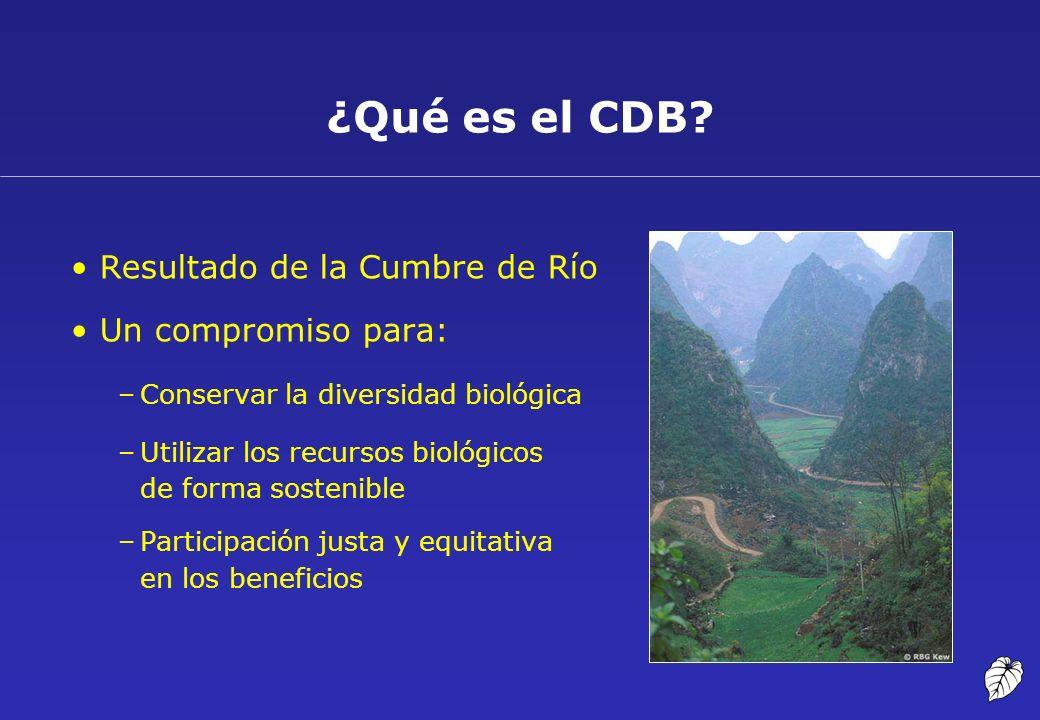 ¿Qué es el CDB Resultado de la Cumbre de Río Un compromiso para: