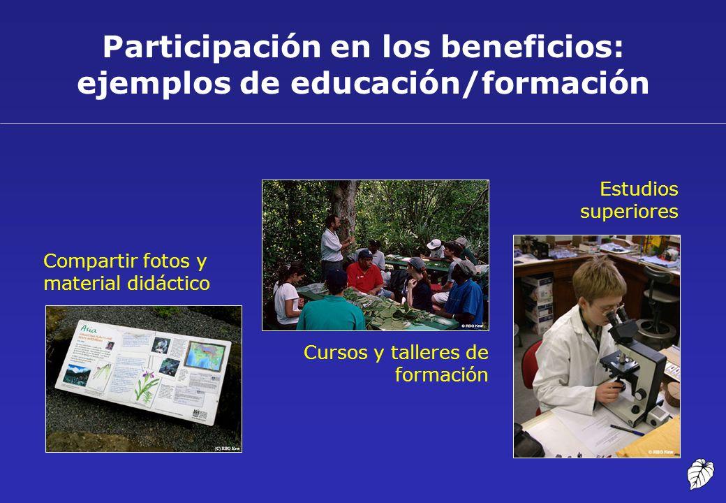 Participación en los beneficios: ejemplos de educación/formación