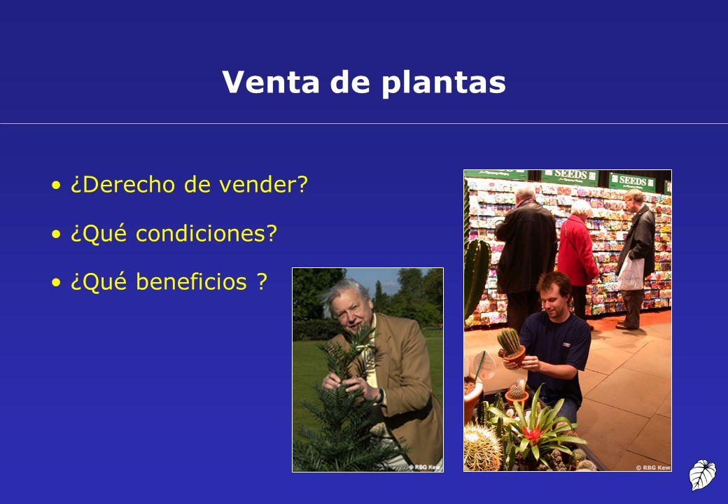 Venta de plantas ¿Derecho de vender ¿Qué condiciones