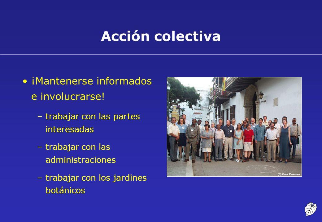 Acción colectiva ¡Mantenerse informados e involucrarse!