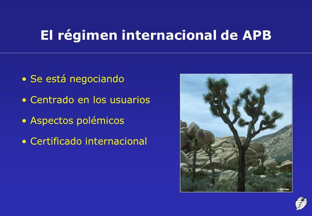 El régimen internacional de APB