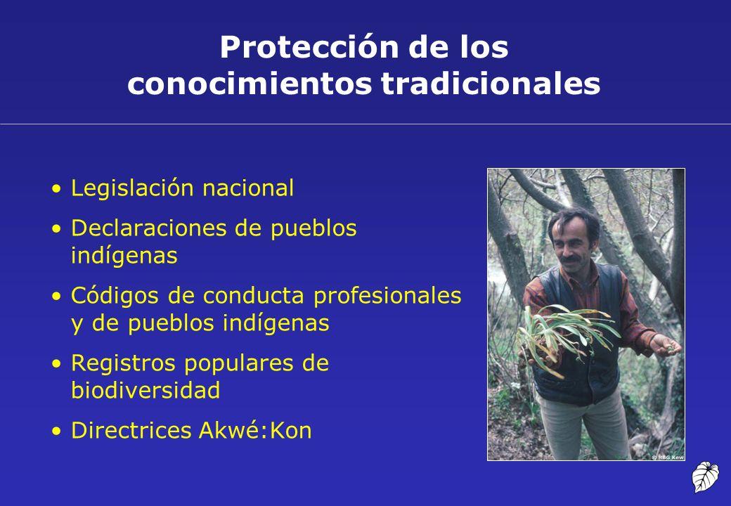Protección de los conocimientos tradicionales