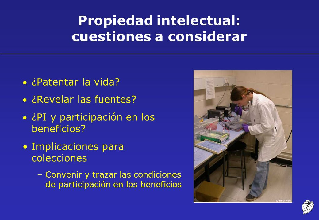 Propiedad intelectual: cuestiones a considerar