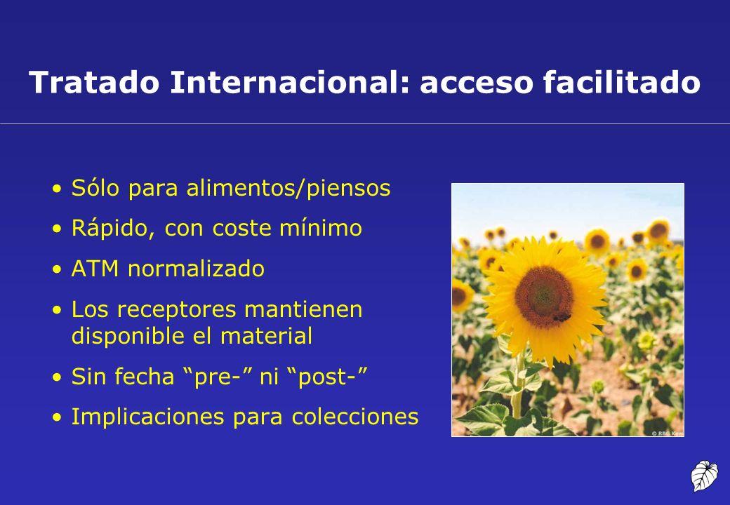 Tratado Internacional: acceso facilitado