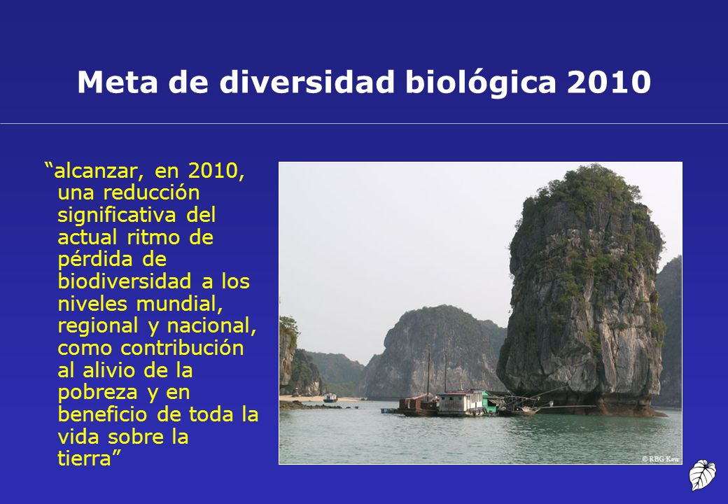 Meta de diversidad biológica 2010