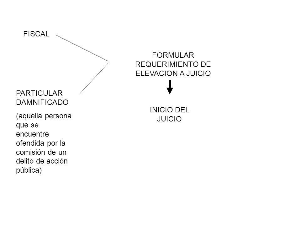 FORMULAR REQUERIMIENTO DE ELEVACION A JUICIO