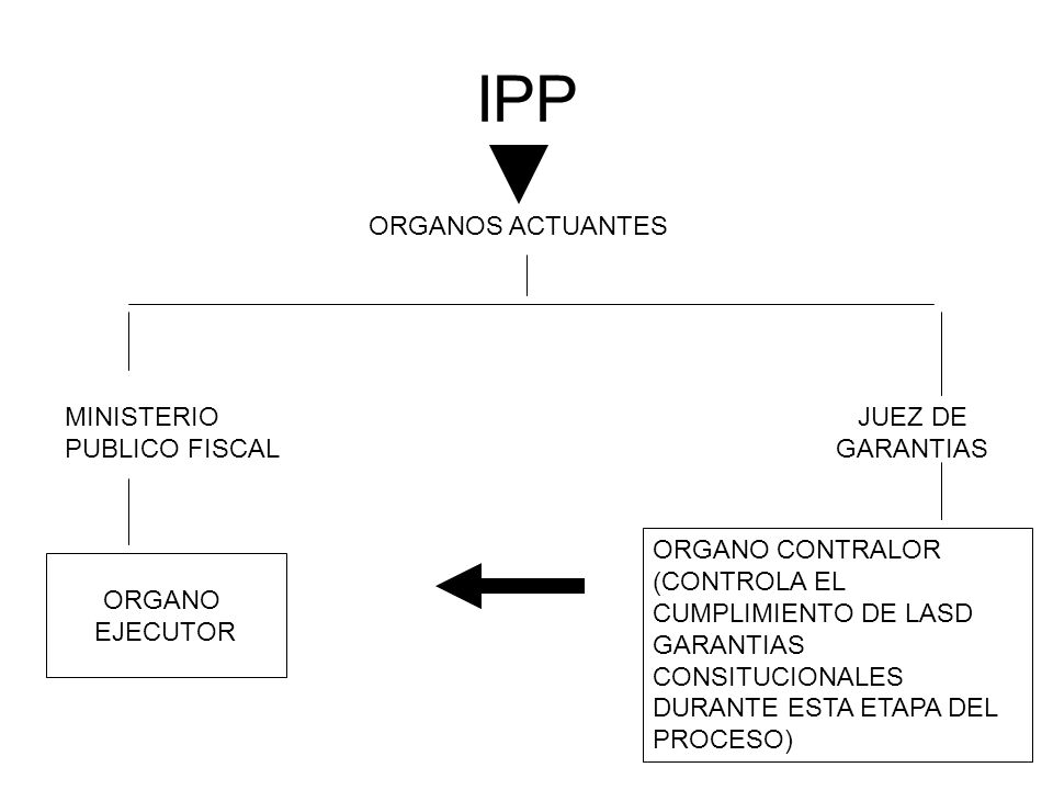 IPP ORGANOS ACTUANTES MINISTERIO PUBLICO FISCAL JUEZ DE GARANTIAS