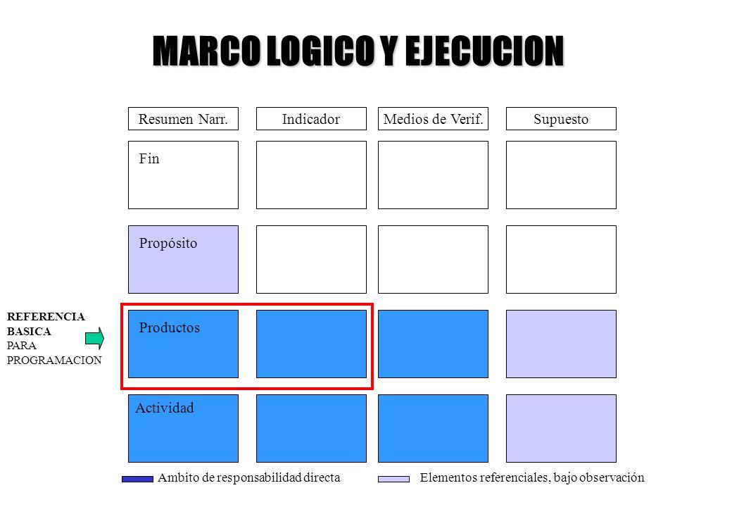 MARCO LOGICO Y EJECUCION