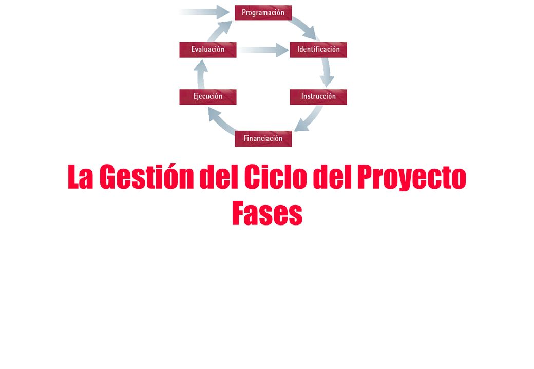 La Gestión del Ciclo del Proyecto Fases