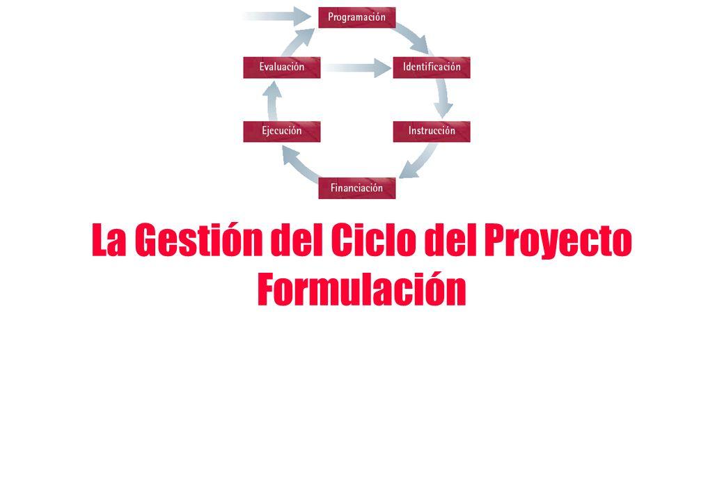 La Gestión del Ciclo del Proyecto Formulación