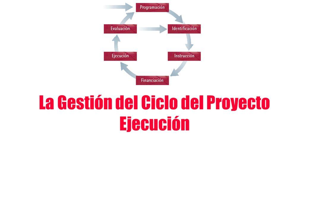 La Gestión del Ciclo del Proyecto Ejecución