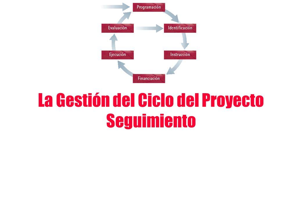 La Gestión del Ciclo del Proyecto Seguimiento