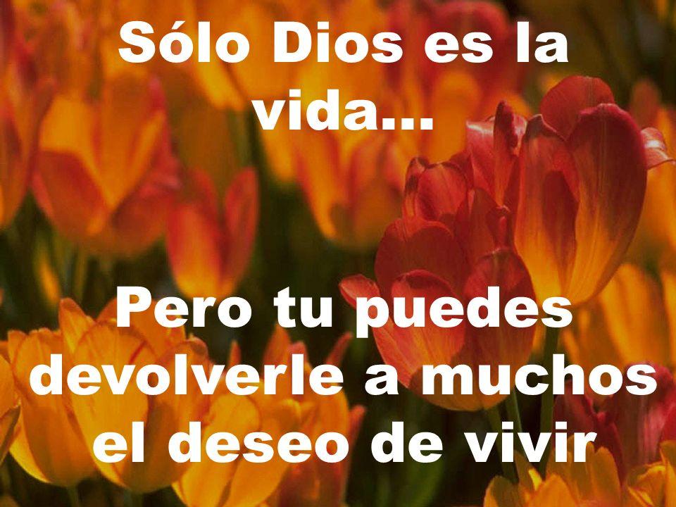 Sólo Dios es la vida... Pero tu puedes devolverle a muchos el deseo de vivir