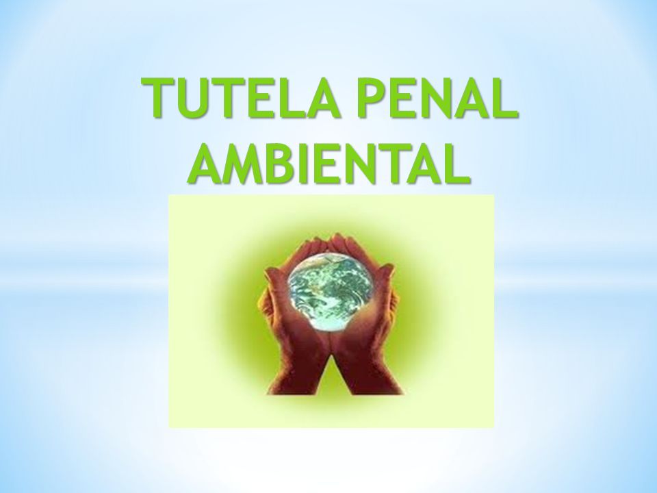 TUTELA PENAL AMBIENTAL