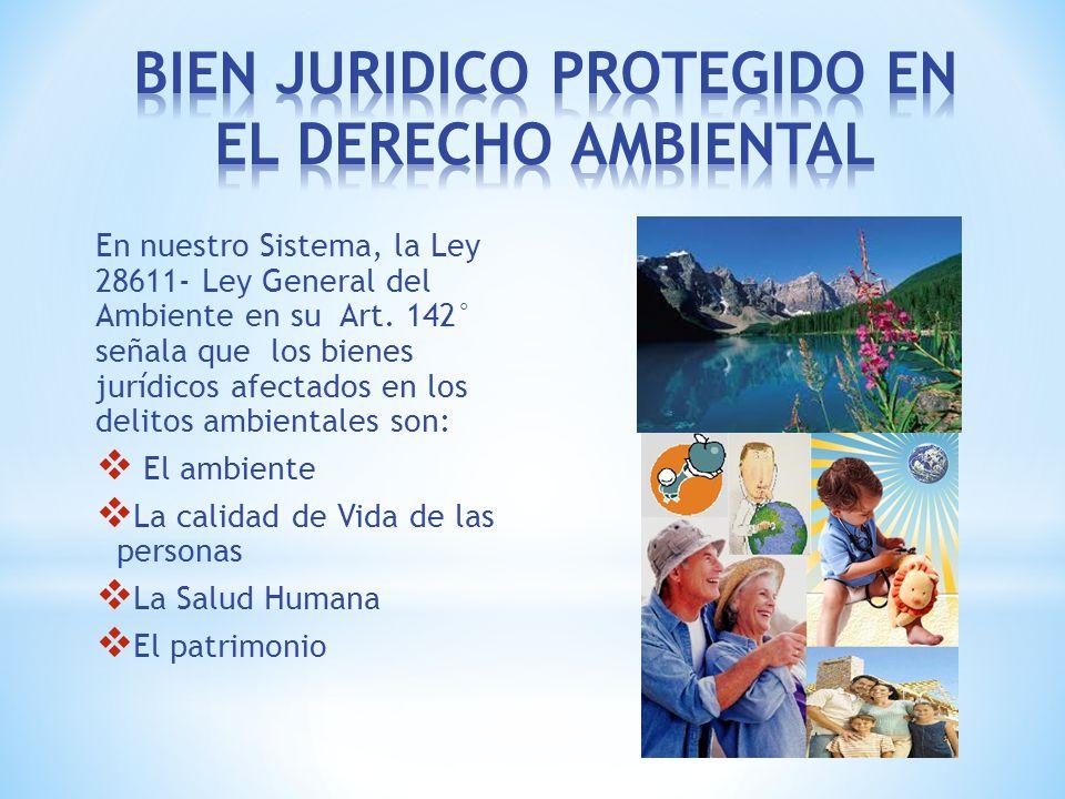 BIEN JURIDICO PROTEGIDO EN EL DERECHO AMBIENTAL