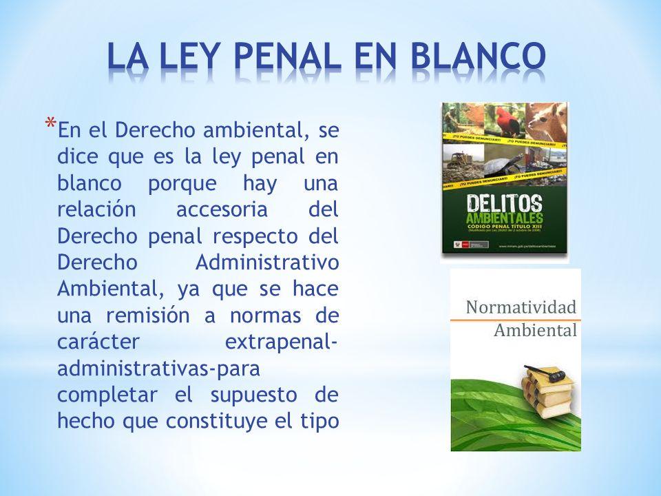 LA LEY PENAL EN BLANCO