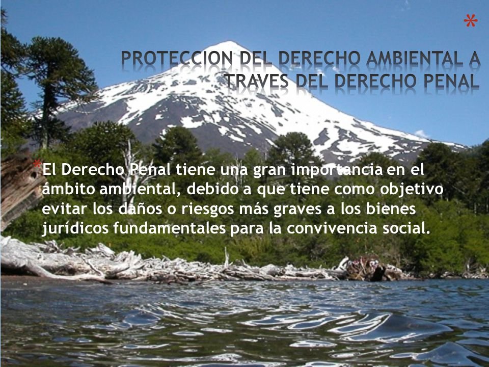 PROTECCION DEL DERECHO AMBIENTAL A TRAVES DEL DERECHO PENAL