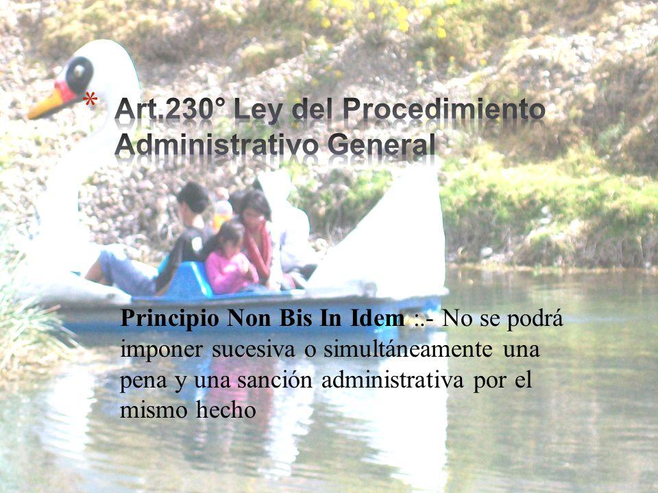 Art.230° Ley del Procedimiento Administrativo General