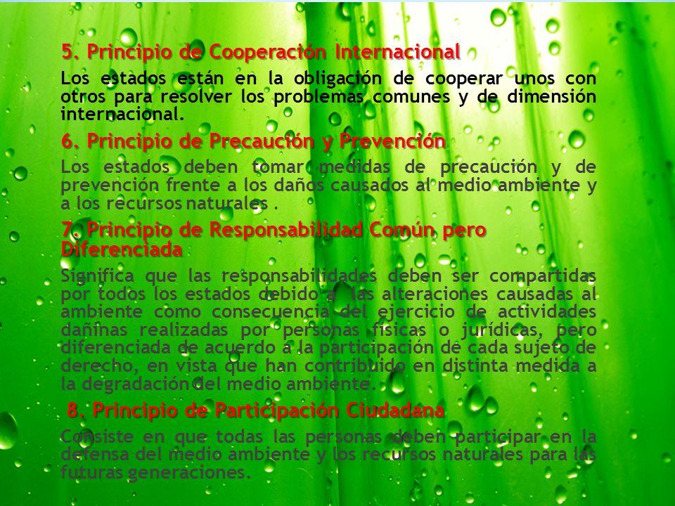 5. Principio de Cooperación Internacional