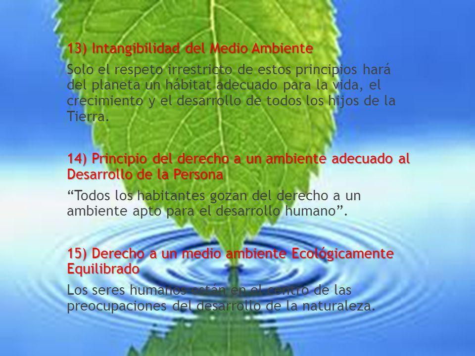 13) Intangibilidad del Medio Ambiente Solo el respeto irrestricto de estos principios hará del planeta un hábitat adecuado para la vida, el crecimiento y el desarrollo de todos los hijos de la Tierra.