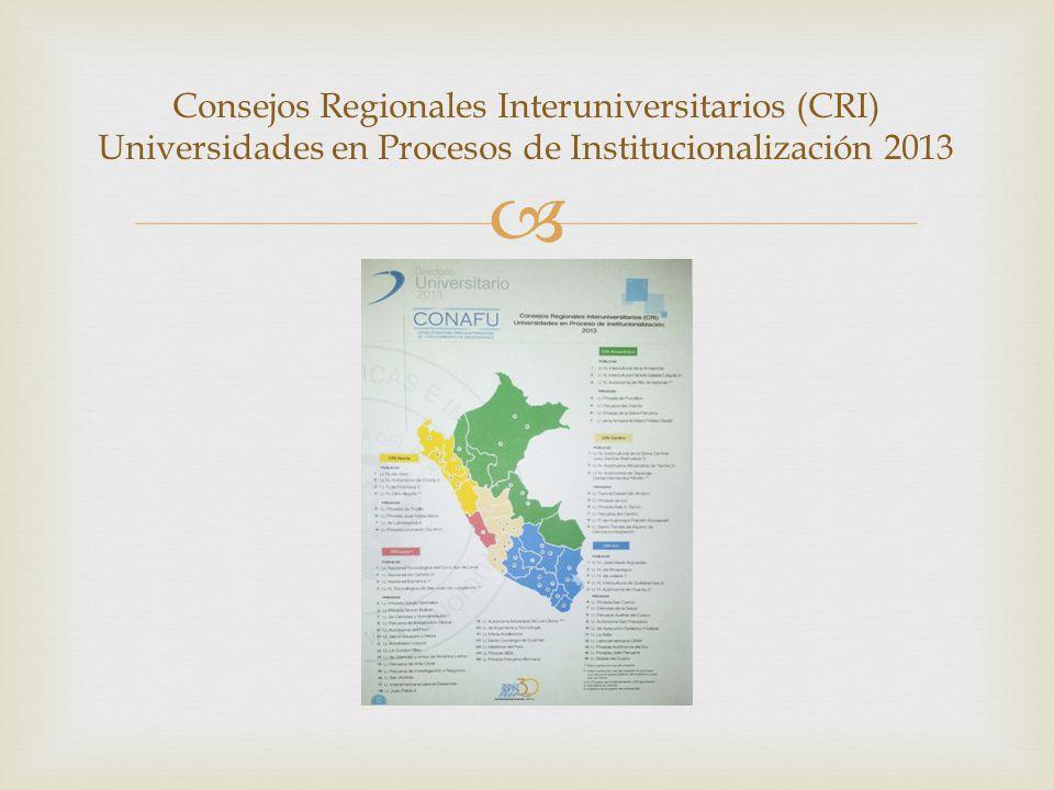 Consejos Regionales Interuniversitarios (CRI) Universidades en Procesos de Institucionalización 2013