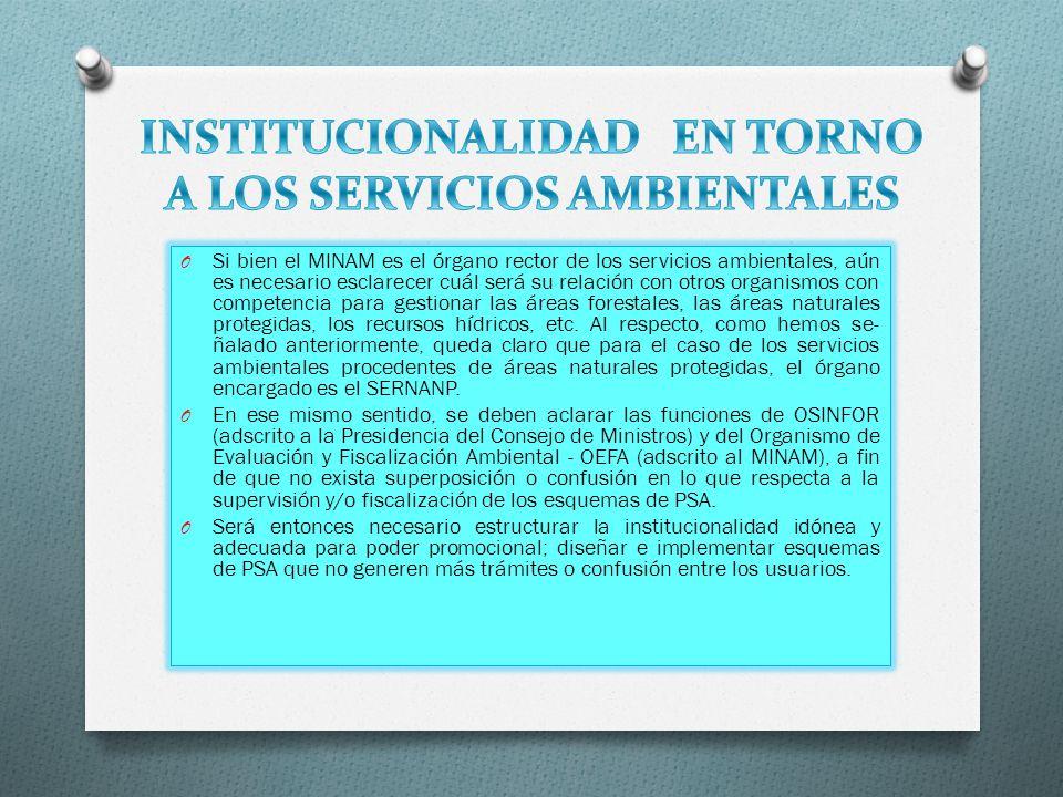 INSTITUCIONALIDAD EN TORNO A LOS SERVICIOS AMBIENTALES
