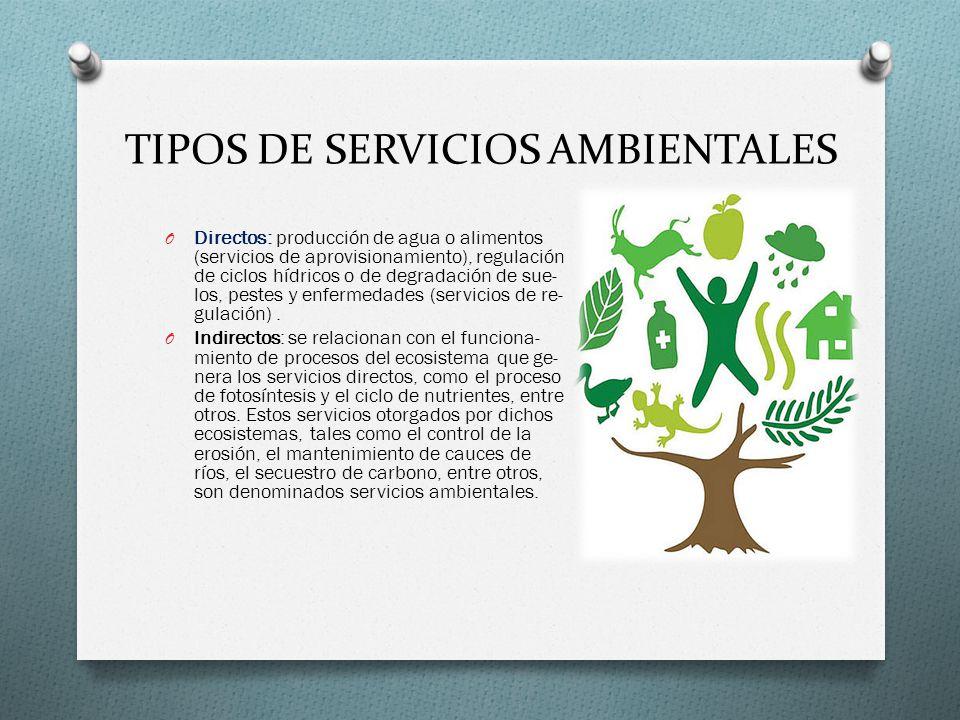 TIPOS DE SERVICIOS AMBIENTALES