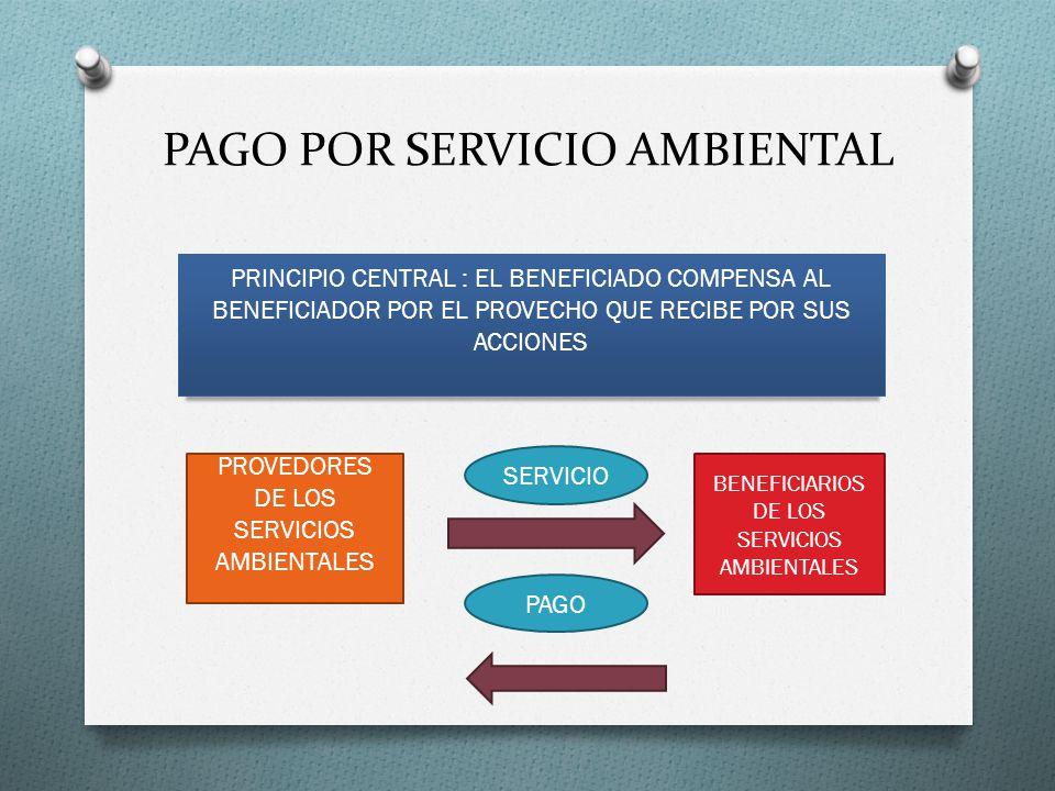 PAGO POR SERVICIO AMBIENTAL