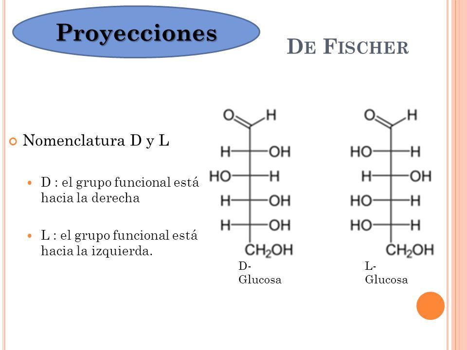 Proyecciones De Fischer Nomenclatura D y L