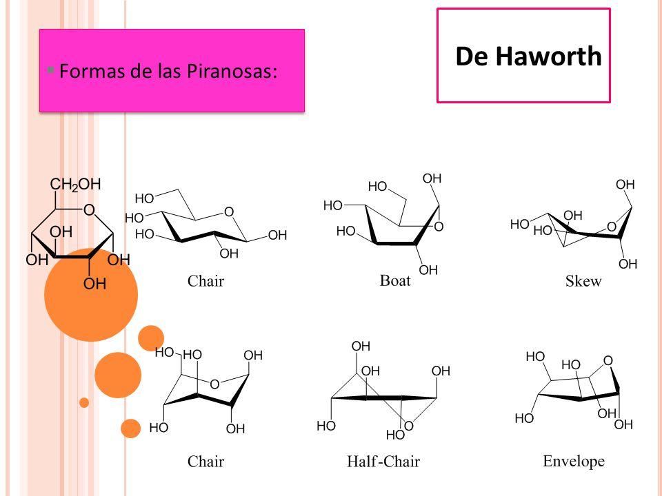 De Haworth Formas de las Piranosas: