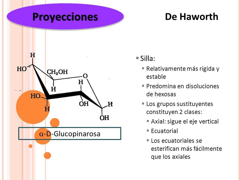 Proyecciones De Haworth Silla: α-D-Glucopinarosa