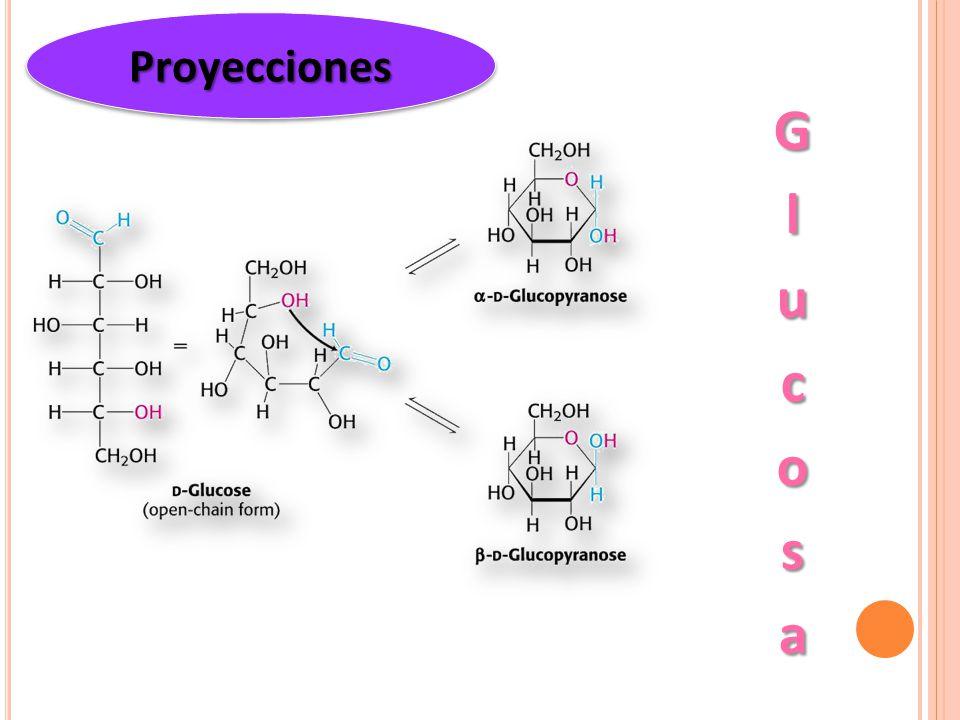 Proyecciones Glucosa