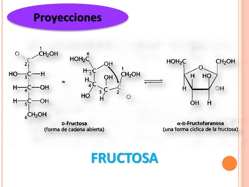 Proyecciones FRUCTOSA
