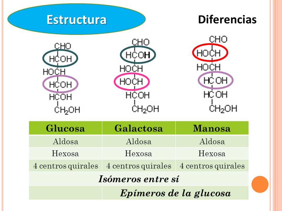 Estructura Diferencias Glucosa Galactosa Manosa Isómeros entre sí