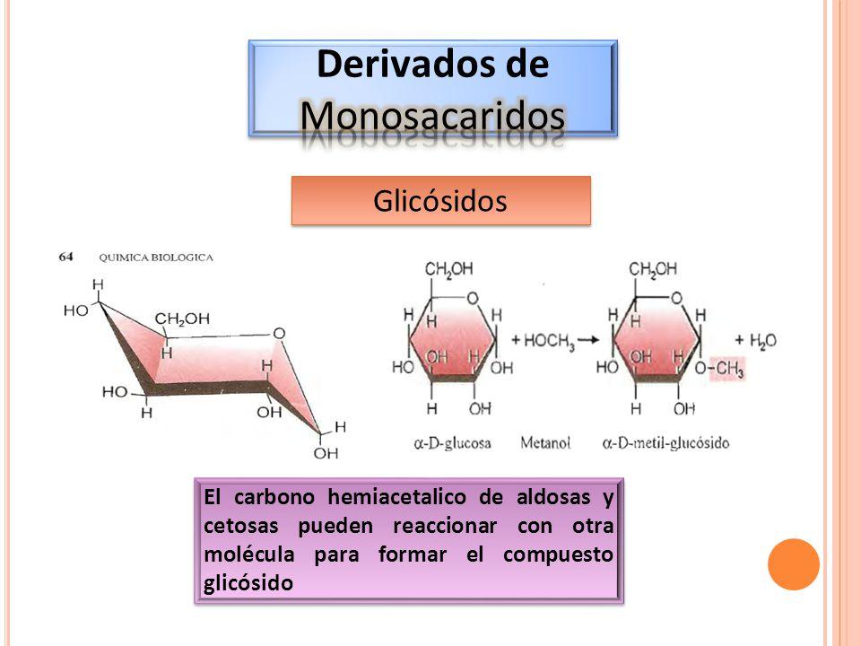 Derivados de Monosacaridos Glicósidos