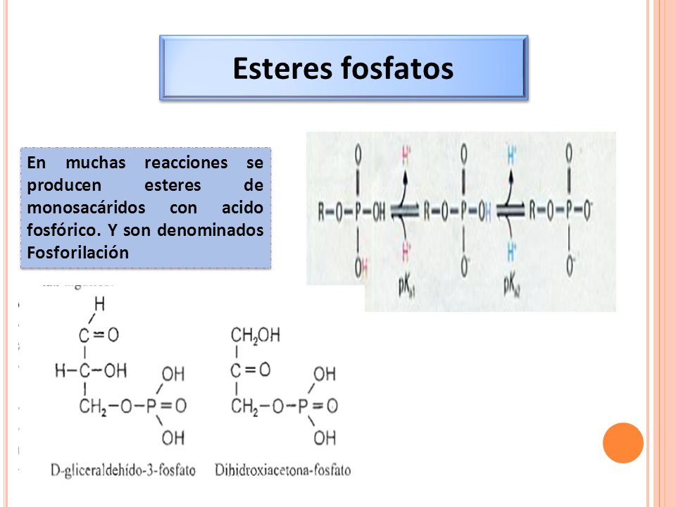 Esteres fosfatos En muchas reacciones se producen esteres de monosacáridos con acido fosfórico.