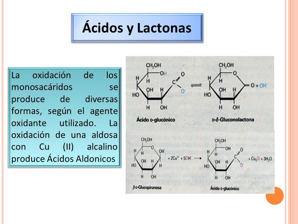 Ácidos y Lactonas
