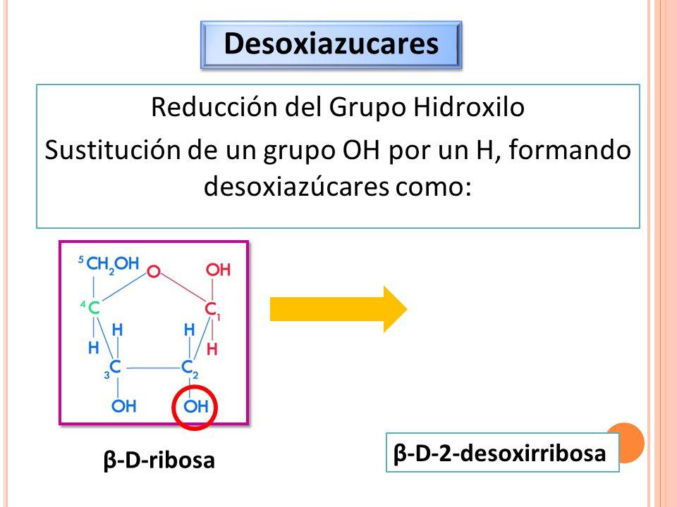 Desoxiazucares Reducción del Grupo Hidroxilo