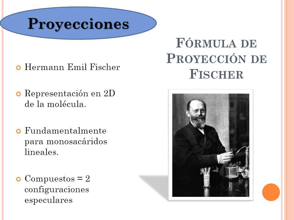 Fórmula de Proyección de Fischer