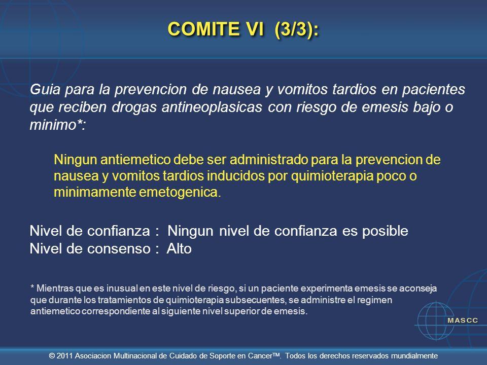 COMITE VI (3/3):