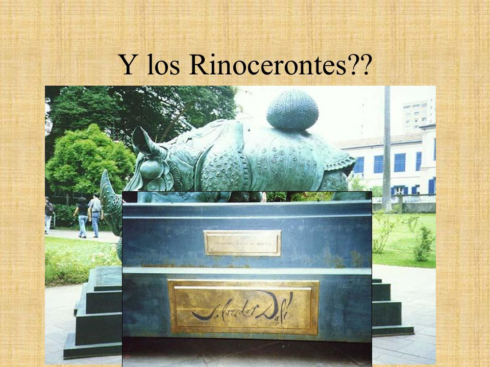 Y los Rinocerontes