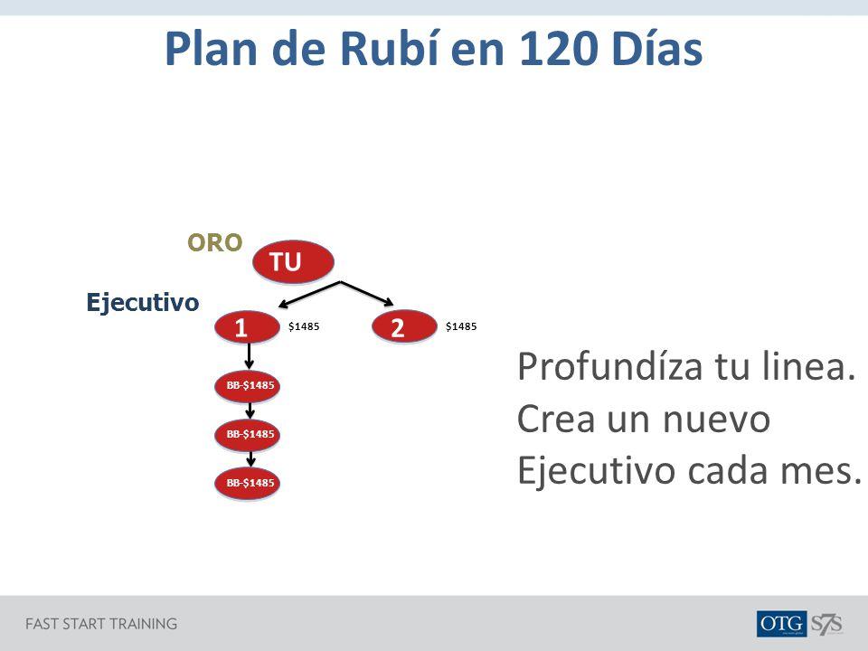 Plan de Rubí en 120 Días Profundíza tu linea.