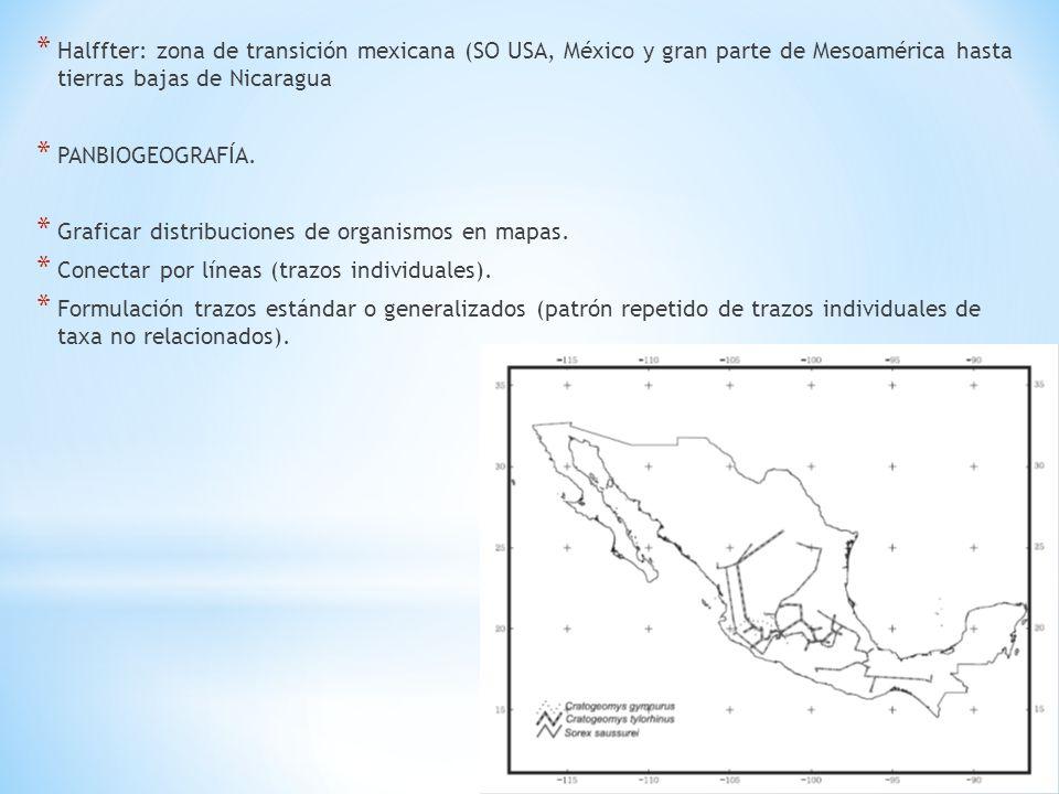 Halffter: zona de transición mexicana (SO USA, México y gran parte de Mesoamérica hasta tierras bajas de Nicaragua