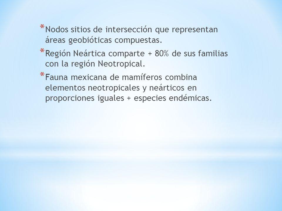 Nodos sitios de intersección que representan áreas geobióticas compuestas.