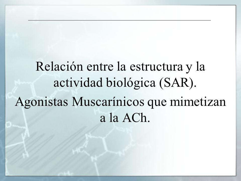 Relación entre la estructura y la actividad biológica (SAR).