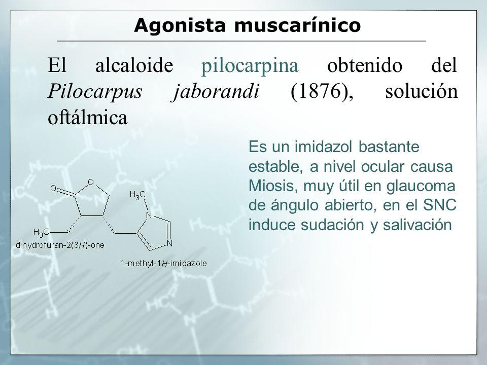 Agonista muscarínico El alcaloide pilocarpina obtenido del Pilocarpus jaborandi (1876), solución oftálmica.
