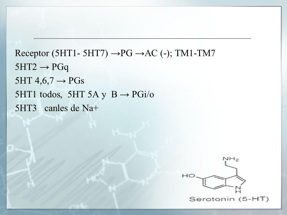 Receptor (5HT1- 5HT7) →PG →AC (-); TM1-TM7