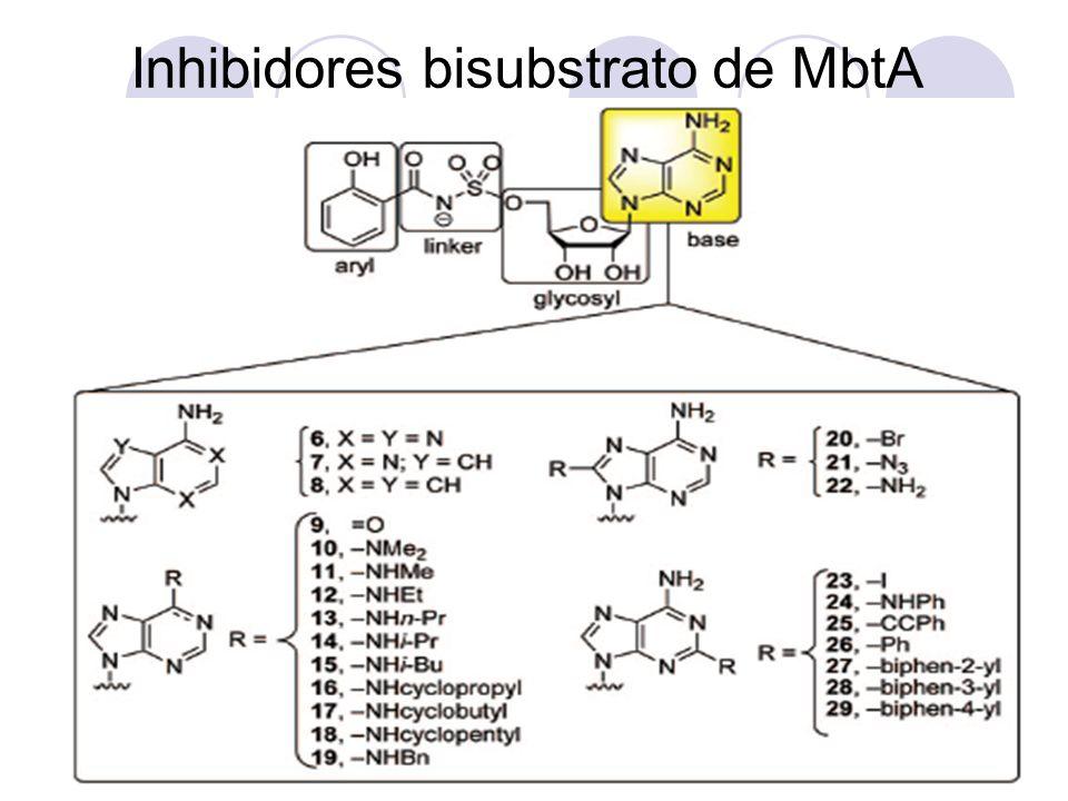 Inhibidores bisubstrato de MbtA