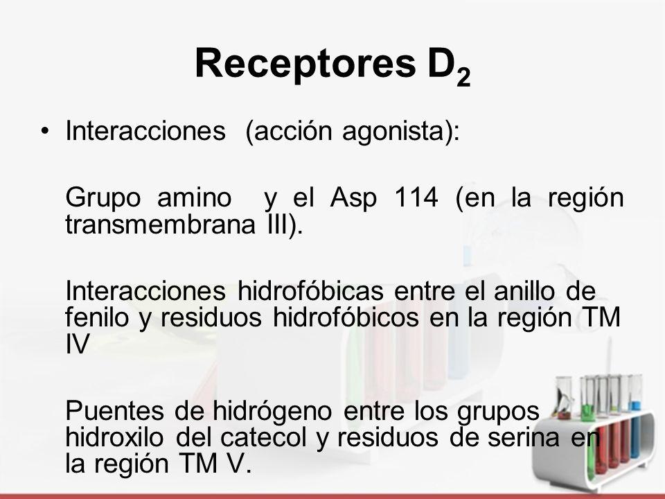 Receptores D2 Interacciones (acción agonista):
